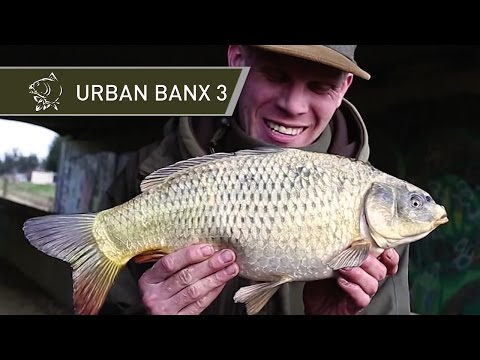 CARP FISHING VIDEOS URBAN BANX 3 ALAN BLAIR ON TIDAL RIVERS - RIVER CROUCH ESSEX - NASH TACKLE