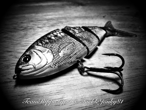 Fishing report - Tackle Warehouse Fishing Order Aug/13/2012 (TeamRippnLipz1) Video