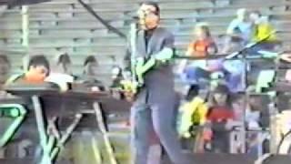 Watch Elvis Costello King Horse video
