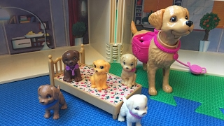 Five Little Puppy Jumping on the Bed - New Nursery Rhymes Songs