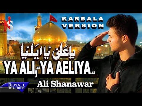 Ali Shanawar | Ya Ali Ya Aeliya | Karbala Version | 2015