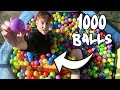 MINI TRAMPOLINE FILLED WITH 1000 PLAY BALLS!