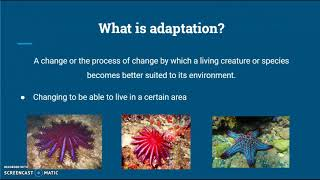 Flipped Classroom #2 Ocean Life Science