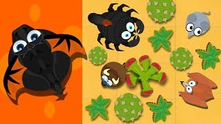 MOPE.IO / MOUSE TO PTERODACTYL TO BLACK DRAGON GAMEPLAY