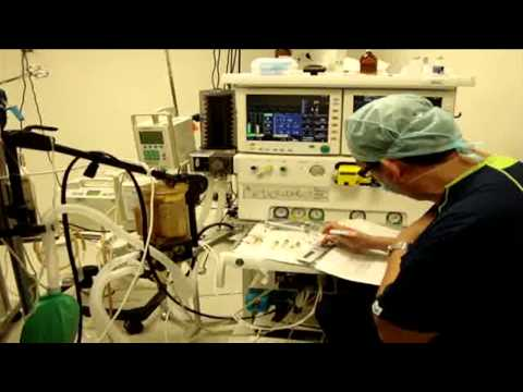HEP realizó con éxito trasplante de riñón a un paciente de 17 años