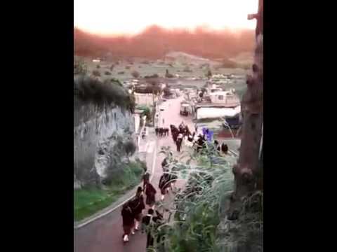 La unión ixtacamaxtitlan puebla desfile del bacho