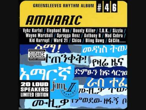 Amharic Riddim Mix (2003) By Dj.wolfpak video