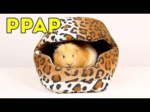 PPAP Pen Pineapple Apple Pen (COVER/ПАРОДИЯ) SVINKISHOW