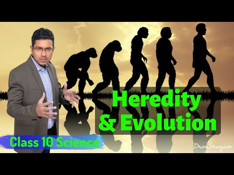Heredity and evolution class 10 videos