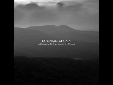 Downfall Of Gaia - Drowning By Wing Beats