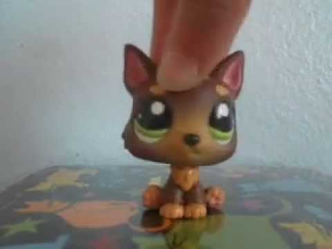 Littlest Pet Shop: Gold || Music Video ||