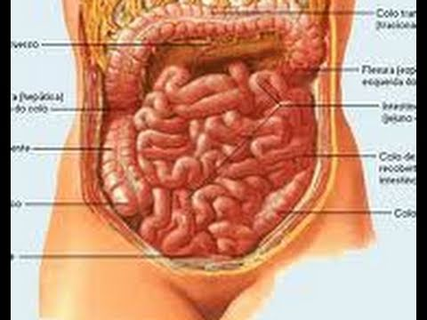 Remedio para el estreñimiento y la colitis. Inflamación del intestino. Colon irritable