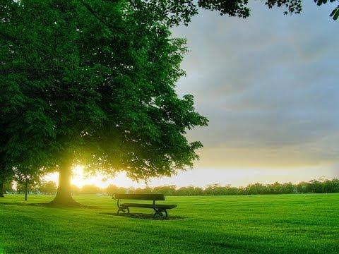 Evergreen - Susan Jacks Hd video