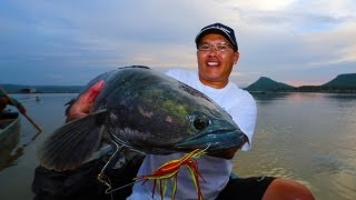Memorable Snakehead Thailand 2013