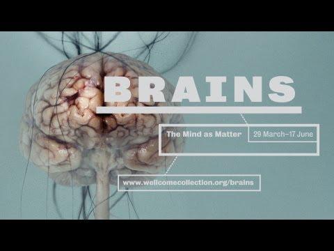 Brains Trailer