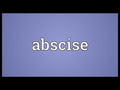 Header of abscise