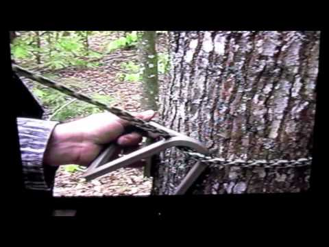 Stepp Ladder...best tree climbing system ever made..good for hunting...yezzr
