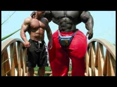 African American Bodybuilders African American Incredible