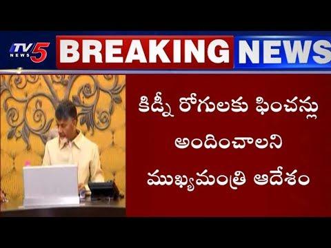 కిడ్నీ వ్యాధులపై సీఎం చంద్రబాబు సమీక్ష | AP Govt On Uddanam Kidney Patients | TV5 News