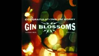 Watch Gin Blossoms Highwire video