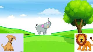 Name Animal and Color - English Learning