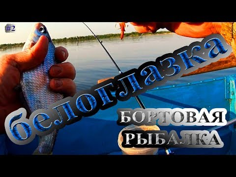 рыбалка на фидер на двине видео