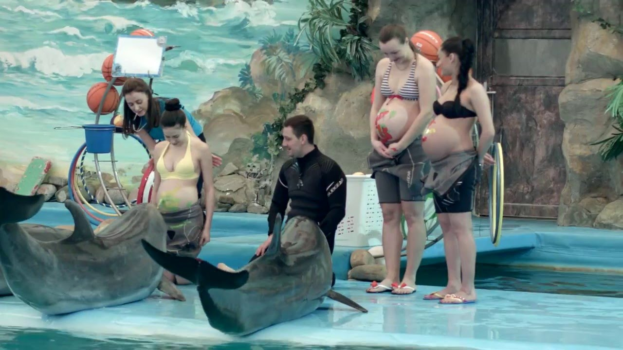 Музыка дельфинов для беременных 100