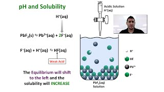 solubility equilibrium and the effect of
