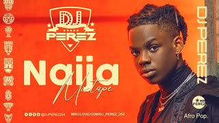 BEST OF NAIJA AFROBEAT VIDEO MIX 2020 | DJ PEREZ | REMA | RUDEBOY | DAVIDO | BURNA BOY | FIREBOY DML