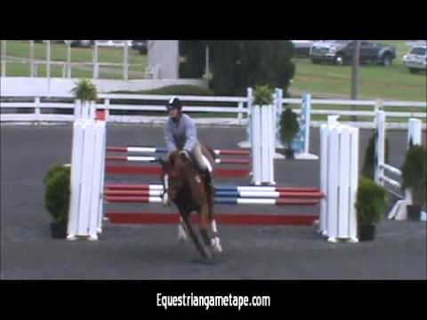 HArry Ryan at St Christopher's Benefit Horse Show 2013 Meter80 Jumper Thursday