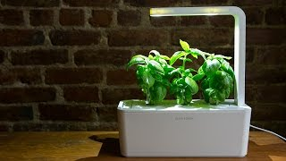 This smart garden is hard to kill