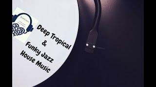 Deep Tropical, Funky Jazz & Tech House Music (Classic Mix)