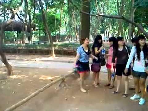 Indonesian Girls video
