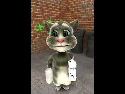 Tom the Talking Cat