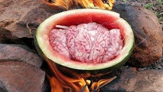 Pork Brains Steamed in Watermelon Fruit / Pig Brains Cooking