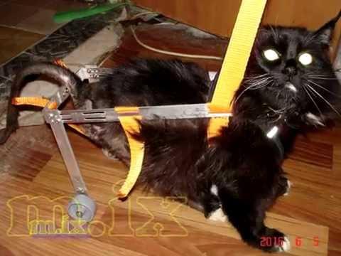 Вязание шнурков крючком схемы 3