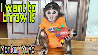 Monkey YoYo Jr gets angry with this toy|Monkey Baby YoYo