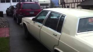 1980 Buick Electra Walk around Cold start