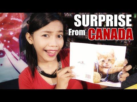 download lagu Surprise From Canada Wow - Nur Amira Syahira gratis