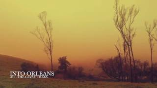 Into Orleans - All the Giant Trees