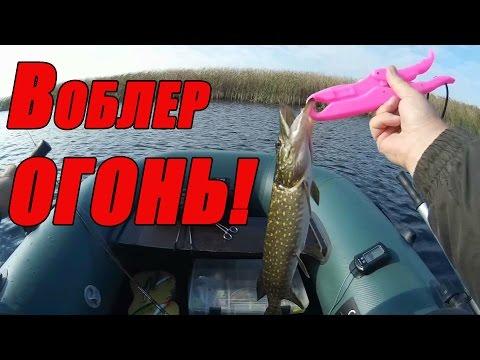 рыбалка на удочку черкассы
