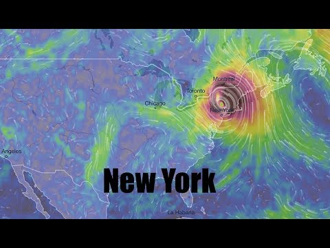 NEW - Updated track for Hurricane Irma has BIG CAT headed for the BIG APPLE - NY