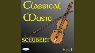 Schubert: quartetto d'archi n.13 in la minore op. 29/1 d 804: rosamunda: allegro ma non troppo