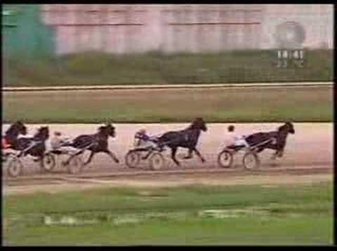 Kasacki Derby 2005 - Beograd - 21. 08.2005.
