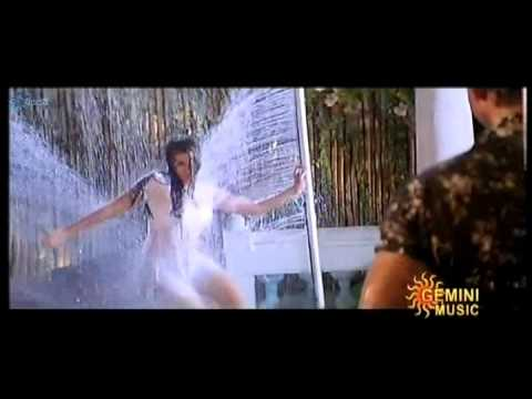Navneet kaur hot telugu song | navel and boobs show