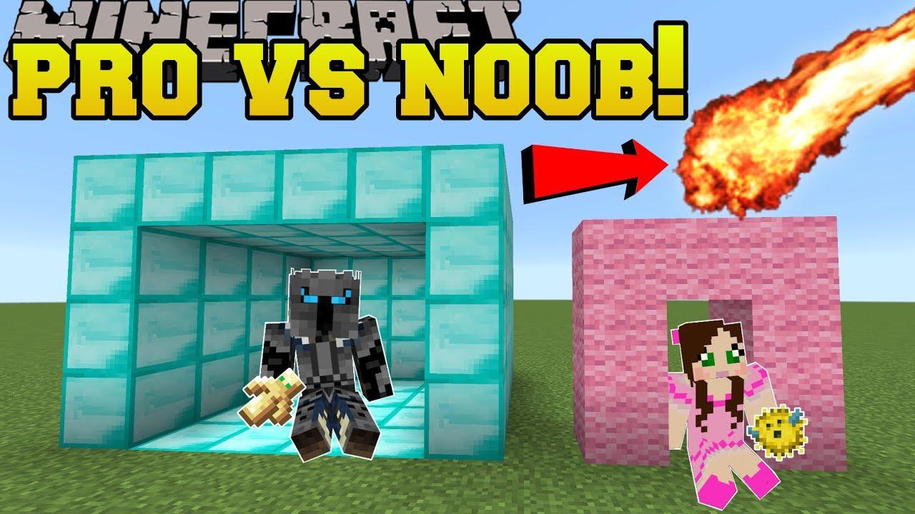 Minecraft: NOOB VS PRO!!! - SURVIVE THE DISASTERS! - Mini-Game