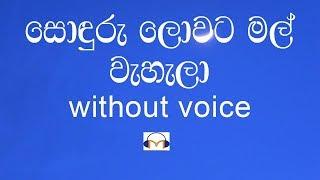 Sonduru Lowata Mal Wahala Karaoke (without voice) සොඳුරු ලොවට මල් වැහැලා