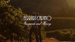 Ferrari-Carano Sustainability