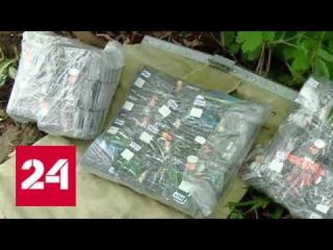 В Екатеринбурге нашли клад с кредитками