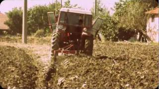 MASSEY FERGUSON 265s İS PLOUGHİNG WİTH 4 FURROW PLOUGH PART-1